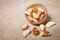 Brazil nuts on Brazil nuts in a coconut shell. Royalty Free Stock Photo