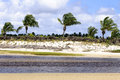 Brazil pititinga beach with palms rn at low tide colored grass stripes and at background Stock Photography