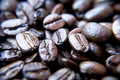 Brazilian coffee grains Stock Photos