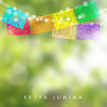 Brazilian Festa Junina or Midsummer greeting card, invitation. Garden party decoration, string of lights, paper flags