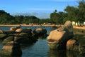 Brazilian Island Beach