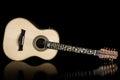 Brazilian ten strings steel guitar Royalty Free Stock Photo