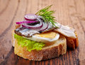 Bread with anchovies and egg decorated red onion dill on wooden table Stock Image
