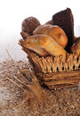 Bread in a basket Royalty Free Stock Photos