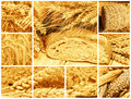 Bread and cereals collage made of pictures about Stock Images