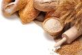 Bread,flour and wheat grains