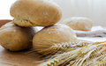 Bread freshly baked homemade and wheat classes Royalty Free Stock Image