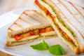 Bread sandwich with cheese, tomato. Healthy vegetarian snacks. Royalty Free Stock Photo