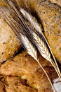 Bread Series (Wheat and bread macro) Stock Photos