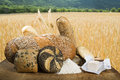 Bread and wheat cereal crops on the background Royalty Free Stock Photography