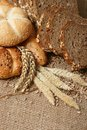 Bread and wheat grains Stock Photos