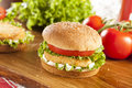 Breaded chicken patty sandwich on a bun with lettuce and tomato Royalty Free Stock Image