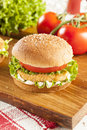Breaded chicken patty sandwich on a bun with lettuce and tomato Royalty Free Stock Photo