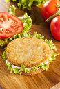 Breaded chicken patty sandwich on a bun with lettuce and tomato Stock Photos