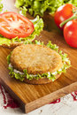 Breaded chicken patty sandwich on a bun with lettuce and tomato Stock Photo