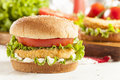 Breaded chicken patty sandwich on a bun with lettuce and tomato Royalty Free Stock Photography