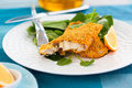 Breaded fish spinach plate Stock Photography