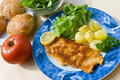 Breaded pork chop with lettuce Stock Images