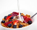 Breakfast cereal Royalty Free Stock Photo