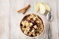 Breakfast Cereal Oatmeal With Apples Cranberries and Cinnamon St Royalty Free Stock Photo