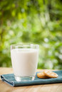 Breakfast concept with fresh milk glass and Royalty Free Stock Photo