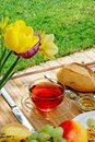 Breakfast in the garden. Stock Image