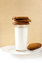 Breakfast with milk and cookies Stock Image
