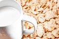 Breakfast with milk and corn flakes detail of on background concept Stock Image