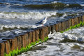 Breakwater baltic sea coast on the island of usedom Stock Photography