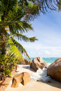 Breakwater at tropical beach a with granite rocks and palms la digue seychelles Royalty Free Stock Photo