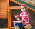 Breeder hens kid girl rancher farmer with chicks in chicken coop Royalty Free Stock Photo
