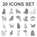 Breeds of cats monochrome icons in set collection for design. Pet cat vector symbol stock web illustration.
