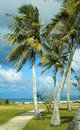 A Breezy Tropical Day Royalty Free Stock Image