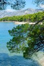 Brela, Croatia with adriatic sea and shadow of pines in summer. Dalmatia, Makarska Royalty Free Stock Photo