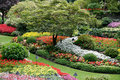 BRENTWOOD BAY, VANCOUVER ISLAND/CANADA - AUGUST 11 : Butchart Ga Royalty Free Stock Photo