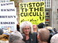 Brian may badger protest supported the anti cull protests in london in june they later marched on to downing st Stock Photography