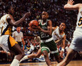 Brian shaw boston celtics point guard image taken from color slide Royalty Free Stock Photography