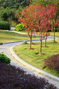 The brick footpath in a tranquil garden. Royalty Free Stock Image