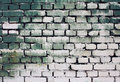 Brick old wall texture with gradient paint green white colors for background Royalty Free Stock Photo