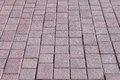 Brick pavement in a city Stock Images