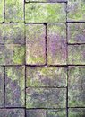 Brick Paving Royalty Free Stock Photo