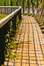 Brick Sidewalk Stock Photography