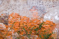 Brick wall background of paint peels from Royalty Free Stock Photos