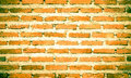 Brick wall detail of old background Royalty Free Stock Photo