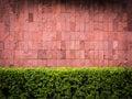 Brick wall and fence bush Royalty Free Stock Photo