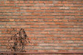 Brick wall texture red spotted of the building Stock Photo