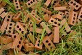 Bricks in grass Stock Photography