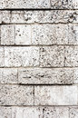 Bricks wall background texture pattern square rectangle stone walls building textured rock white seashell carved model design Royalty Free Stock Images