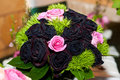 Bridal bouquet beautiful wedding made ​​of pink roses and burgundy Stock Photography