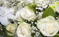 Bridal flowers Royalty Free Stock Photo